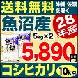 魚沼産コシヒカリ 産直 10kg(5kg×2) H28年産 米 【送料無料】(沖縄・佐渡を除く)