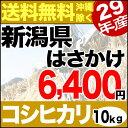 【新米】はさかけ米 新井産コシヒカリ 10kg(5kg×2) 29年産 新潟産 米 【送料無料】(沖縄を除く)