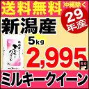 【新米】ミルキークイーン 5kg 29年産 新潟産 米 【送料無料】(沖縄を除く)