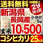 新潟県長岡産コシヒカリ 25kg 玄米 29年産 米 【送料無料】(沖縄を除く)