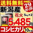 【新米】新潟産コシヒカリ 花火 10kg(5kg×2) 29年産 米 【送料無料】(沖縄を除く)