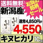 キヌヒカリ 10kg(5kg×2) 29年産 新潟産 米 【おすすめ銘柄セール】【送料無料】(沖縄を除く)