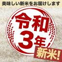 新米 こがねもち米 10kg(5kg×2) 令和3年産 新潟産 米 【送料無料】(北海道、九州、沖縄除く) 2