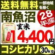 南魚沼産コシヒカリ 30kg 玄米 H28年産 米 【送料無料】(一部地域を除く)