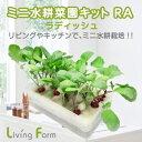 リビングファーム LFS-325 ミニ水耕菜園キットRA ラ...