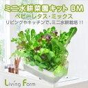 リビングファーム LFS-329 ミニ水耕菜園キットBM ベ...