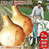 【送料無料】淡路島玉ねぎ 3キロ[Sサイズ〜2Lサイズお任せ]#訳ありたまねぎ3kg【購入特典】#