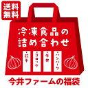 冷凍食品の詰め合わせ福袋【 ハンバ−グ 牛丼 コロッケ 餃子
