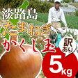 淡路島たまねぎかくし玉【訳あり】5kg #かくし玉訳あり5K#たまねぎ たまねぎ たまねぎ たまねぎ たまねぎ たまねぎ