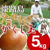 淡路島たまねぎかくし玉【訳あり】5kg #かくし玉訳あり5K#たまねぎ