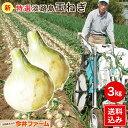 淡路島新玉ねぎ3キロ 【タマネギ】【たまねぎ】#淡路たまねぎ...