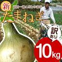 【ご予約】【送料無料】淡路島新玉ねぎ【訳あり】10キロ