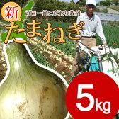 【送料無料】#特選 淡路島新玉ねぎ 5キロ#新たまねぎ たまねぎ