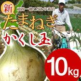 淡路島産新たまねぎ #かくし玉10キロ#【5キロ×2】