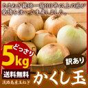 淡路島たまねぎかくし玉【訳あり】5kg #かくし玉訳あり5K...