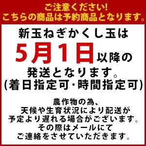 【送料無料】淡路島新たまねぎ#かくし玉5K#