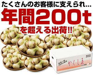 【送料無料】淡路島たまねぎ#かくし玉5K#