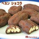 ペカン・ショコラ (ピーカンナッツ チョコレート)ペカンショコラ