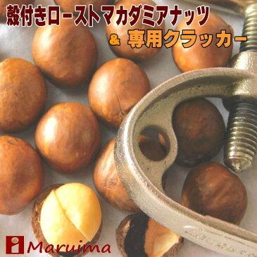 殻付きマカダミアナッツ 1kg と専用クラッカーの超お得セット(送料無料)(マカデミアナッツ)