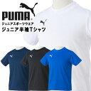 プーマ 子供用スポーツウエア ジュニア半袖Tシャツ PUMA 903619