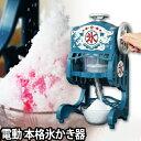 電動かき氷機 かき氷器 電動本格ふわふわ氷かき器 DCSP-