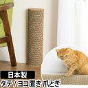 爪とぎ 猫 カリカリーナ レーニョ タワー 日本製 ダンボー...
