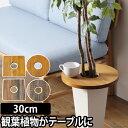 ミニテーブル プランツテーブル PLT Plants Table 30cm プランター 植木鉢 鉢植え 観葉植物 インテリア コーヒーテーブル 天然木 ウッド