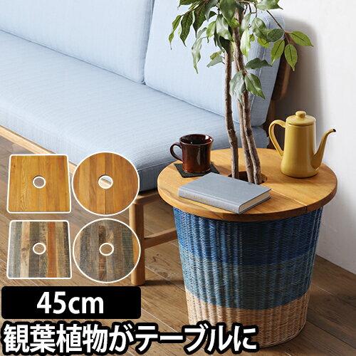 PLT Plants Table 直径45cm