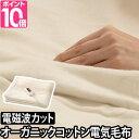 電気毛布 電磁波99%カット 【温湿時計or陶器の加湿器 特...