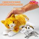 なでなでねこちゃんDX2 鳴く ぬいぐるみ ロボット 猫 おしゃべり アニマル 返事 話すぬいぐるみ おもちゃ かわいい ねこ 人形 電子ペット ネコ リアル ホビー キッズ