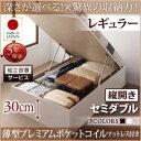 組立設置付 国産跳ね上げ収納ベッド Regless リグレス 薄型プレミアムポケットコイルマットレス付き 縦開き セミダブル 深さレギュラー日本製ベッド 国産ベッド 日本製