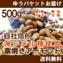 《ミニパックおまけ付》【カーメル種使用/焙煎】素焼きアーモンド500g(無塩・無油)