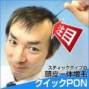 【全額返金保証】クイックPON 増毛 植毛 かつら 抜け毛 メンズ レディース ウィッグ