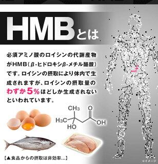 【HMB】サプリメント【送料無料】HMBCa2,380mg配合!BCAAワイルドビルドマッスルエイチエムビーHMBカルシウムHMB2380増強hmbプロテイン筋トレ