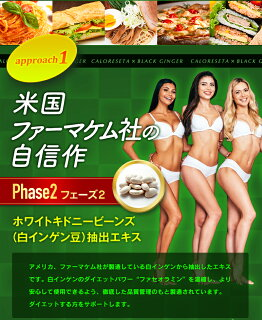 ダイエットサプリカロリセッタ×ブラックジンジャー180粒美容カロリーカロリミット難消化性デキストリンボーテサンテラボラトリーズ