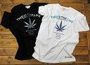 ハワイ Tシャツ ロゴ ヘンプ グラデーション柄