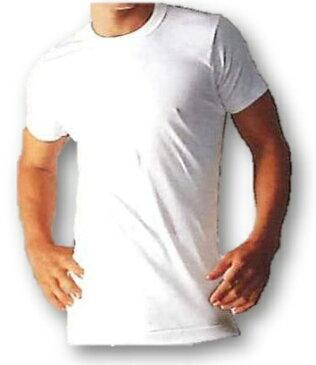 ★ポイント5倍★【BVD】ゴールド(GOLD)丸首半袖Tシャツ(LL)【3枚セット】:G013LLP5【あす楽_土曜営業】【あす楽_日曜営業】【大きいサイズ】キングサイズ
