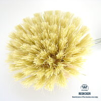 [REDECKER/レデッカー]柄付きキッチンブラシ