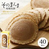 【飛騨名産】味噌煎餅2枚入×9袋【創業百年/自家製味噌】