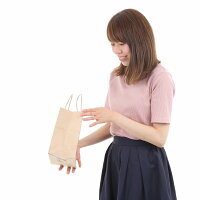 紙袋手提げ紙袋HS−5茶無地小さい紙袋1セット50枚180x120x220【ペーパーバッグ無地手提げ袋手提げ紙袋業務用】