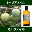マルラオイル(オーガニック)[未精製] 100mlMarula Organic Oil〜 キャリアオイル(植物油/ベースオイル)〜 【IST】