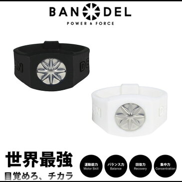 【着後レビューでBANDELグッズプレゼント!】BANDEL バンデル PLATE RING プレートリング 指輪