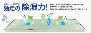 マニフレックスマニシート・ネオダブル【後払無料】【送料無料】【】