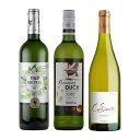 送料無料 酸化防止剤 無添加 オーガニック 白 ワイン 3本 セット フランス 南アフリカ 父の日