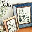 AntiqueTools[����ƥ������ġ��륺]�������ȥե졼��|�ե��ȥե졼��|�̿�Ω�ơڥ����ե�����