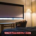 ロールスクリーン オーダー ニチベイ ソフィ 防炎 フォルゼBC 遮光1級 N9165〜N9169 幅240.5〜270cmX高さ161〜200cm