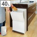 ゴミ箱 分別 縦型 2段 薄型 ワイド 40L ベーシックカラー (ごみ箱 ペダル ダストボックス 防臭 スリム キッチン 台所 おしゃれ )