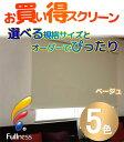 【送料無料】ロールスクリーン 目隠しや間仕切りとしても使用可能 ロールカーテン 木ネジタイプ 既製品 エクシヴ 遮光タイプ ●170x220cm 2