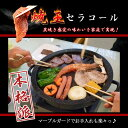 【ポイント最大36.5倍・送料無料】焼肉プレート 室内 バー