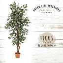 【送料無料_d】人工観葉植物 大型 フェイクグリーン インテリア 造花 フィカス 160cm 1